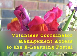 Interim VOL COOR Management Access to E-Learning Portals